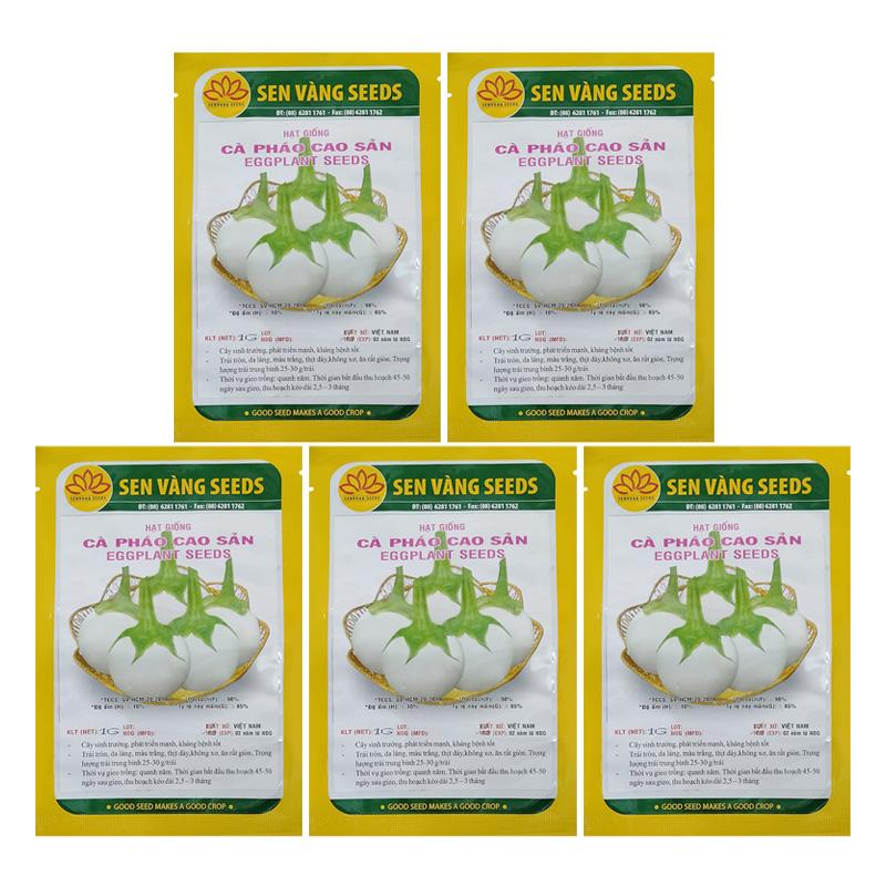 Bộ 5 túi 1g Hạt Giống Cà Pháo Cao Sản Sen Vàng Seeds (Solanum macrocarpon)
