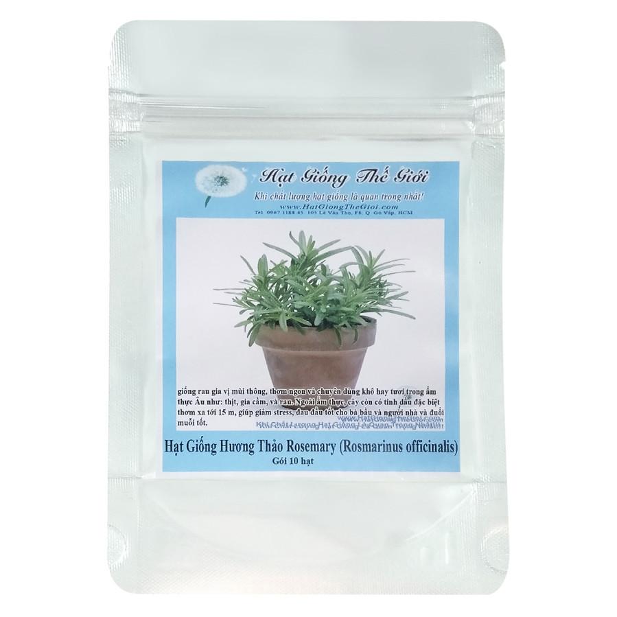 Hạt Giống Hương Thảo Rosemary - Rosmarinus officinalis (10 Hạt)