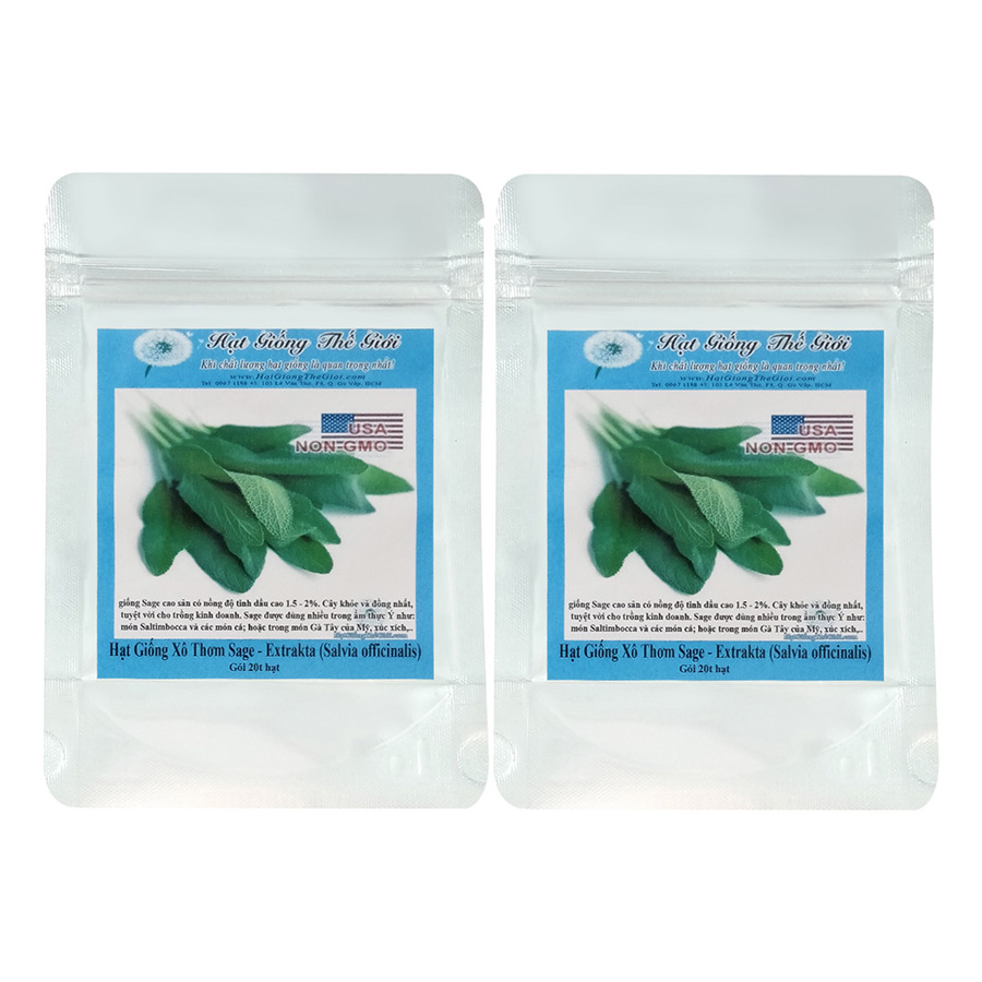 Bộ 2 Túi Hạt Giống Xô Thơm Sage (Salvia officinalis) 20 Hạt