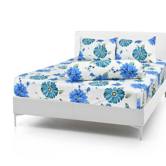 Bộ Drap Cotton Vải Thắng Lợi Áo Gối Vải Thắng Lợi Chần Gòn 1,6x 2m hoa đồng tiền xanh