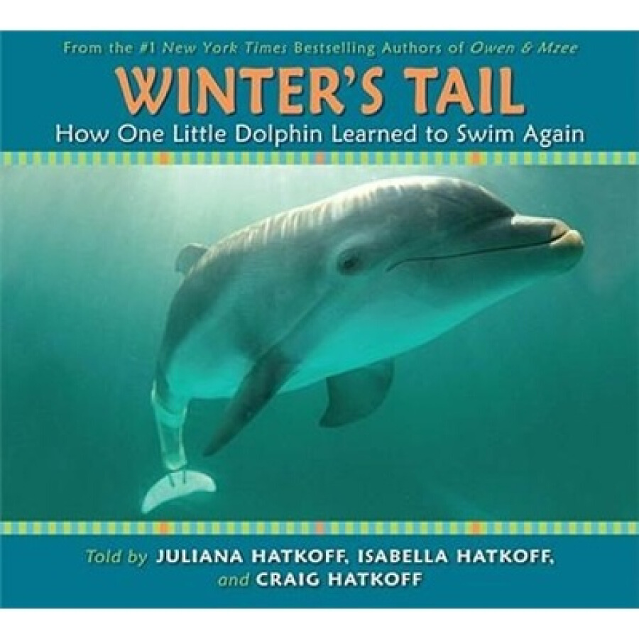 Winters Tail: How One Little Dolphin Learned to Swim Again