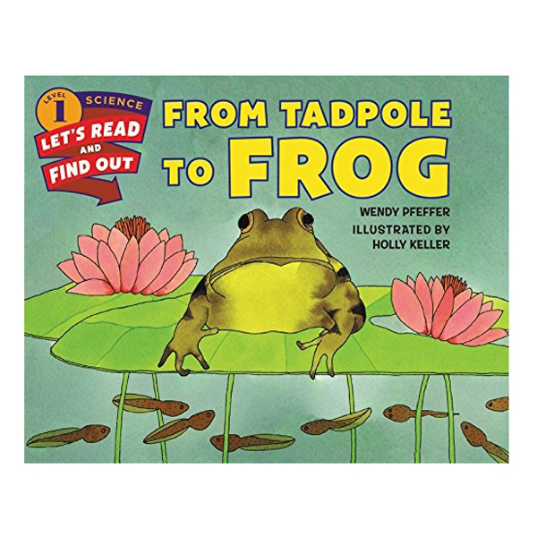 Lrafo L1: From Tadpole To Frog - 1653940 , 3387571597342 , 62_11466465 , 246000 , Lrafo-L1-From-Tadpole-To-Frog-62_11466465 , tiki.vn , Lrafo L1: From Tadpole To Frog