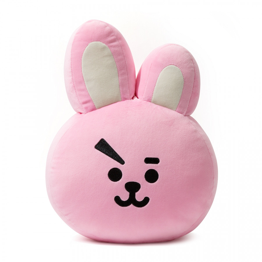 [BT21] Cushion 42cm - 1950576 , 6799097644122 , 62_14012009 , 3773000 , BT21-Cushion-42cm-62_14012009 , tiki.vn , [BT21] Cushion 42cm