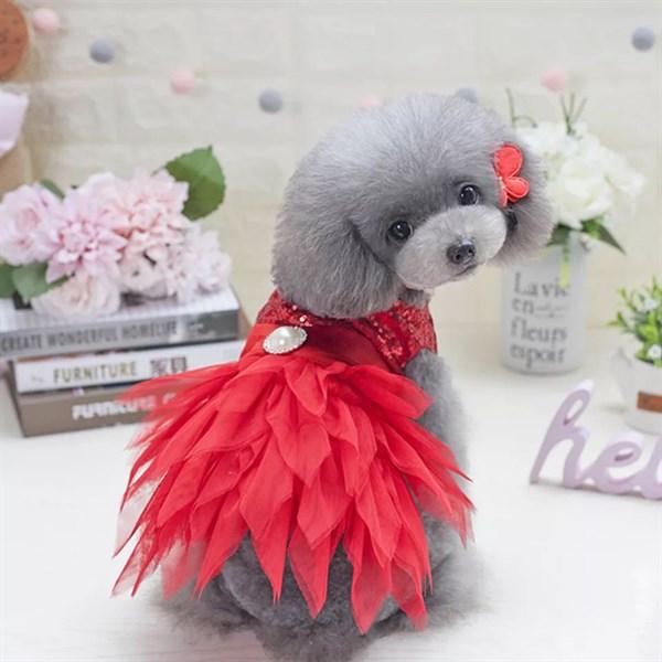 Váy MH Công chúa châu âu - 7297867 , 8930665155086 , 62_14886976 , 170000 , Vay-MH-Cong-chua-chau-au-62_14886976 , tiki.vn , Váy MH Công chúa châu âu
