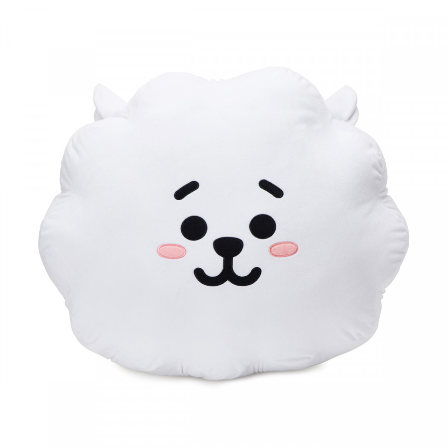 [BT21] Cushion 65cm