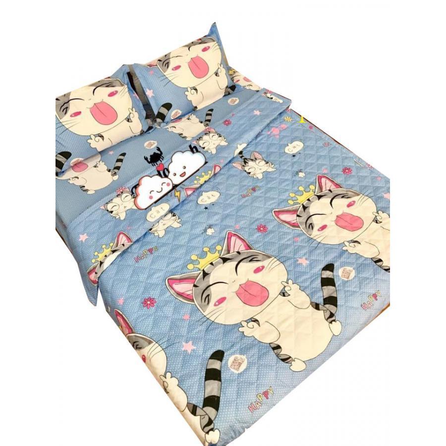 Set 5 món chăn hè ga chun Cotton Poly mèo