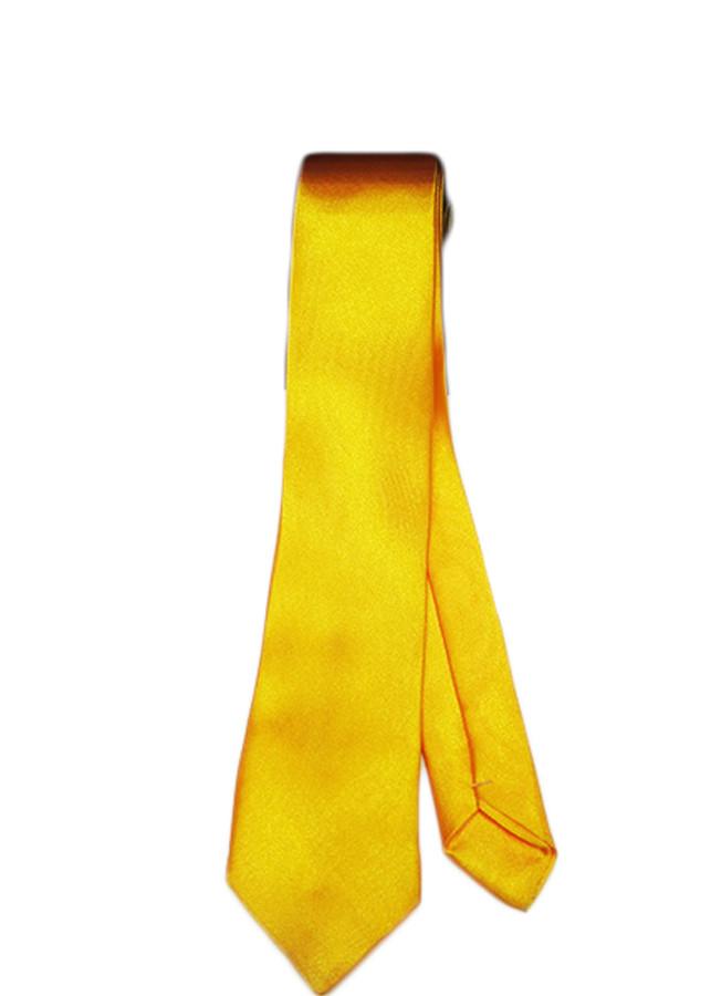Cà vạt nam nữ trơn C02 - bản 5cm - 961400 , 3938569549654 , 62_5060739 , 63250 , Ca-vat-nam-nu-tron-C02-ban-5cm-62_5060739 , tiki.vn , Cà vạt nam nữ trơn C02 - bản 5cm