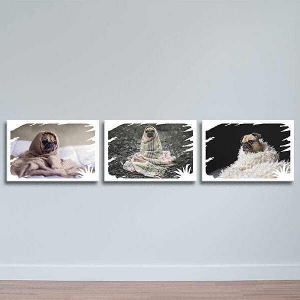 """Bộ 3 Tranh Canvas Viền Composite Treo Tường Hình Thú """"Pug Và Khăn Choàng"""" W505"""