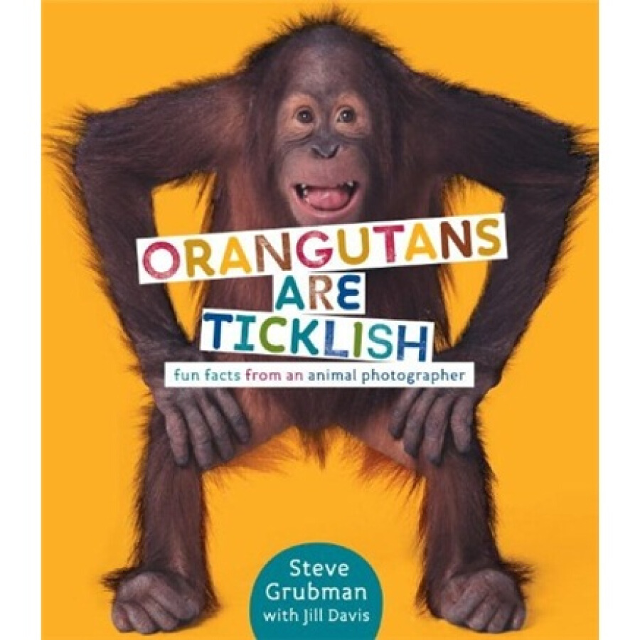 Orangutans Are Ticklish: Fun Facts from an Animal Photographer - 1319193 , 5558504747471 , 62_5309719 , 1897000 , Orangutans-Are-Ticklish-Fun-Facts-from-an-Animal-Photographer-62_5309719 , tiki.vn , Orangutans Are Ticklish: Fun Facts from an Animal Photographer