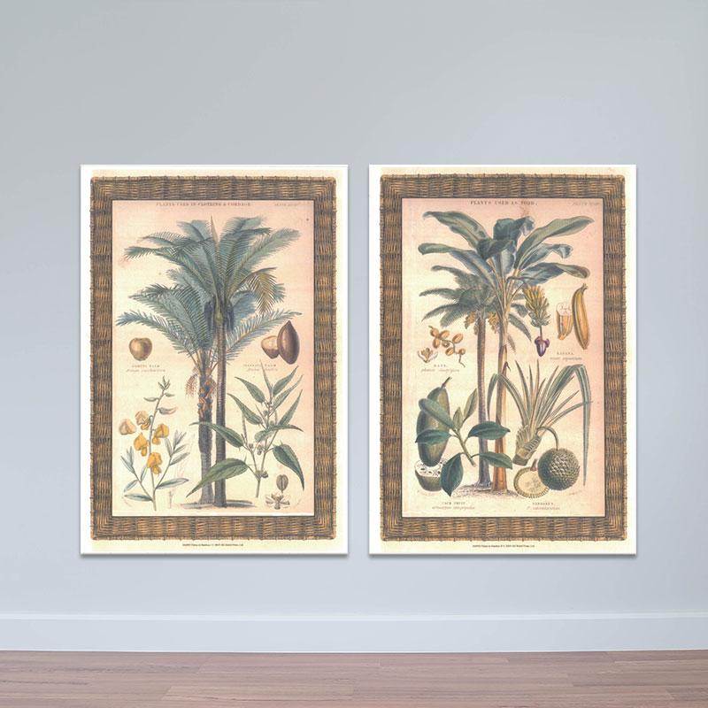 Bộ 2 tranh treo tường cây trái   Tranh trang trí hoa lá W3435 Canvas Có Viền - 18761270 , 1299298849913 , 62_20493546 , 1153000 , Bo-2-tranh-treo-tuong-cay-trai-Tranh-trang-tri-hoa-la-W3435-Canvas-Co-Vien-62_20493546 , tiki.vn , Bộ 2 tranh treo tường cây trái   Tranh trang trí hoa lá W3435 Canvas Có Viền
