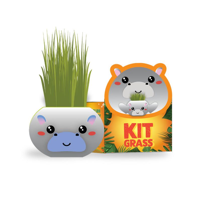 Africa animals - Chậu cây trồng Grass Kit - hình HÀ MÃ và hạt giống tiêu chuẩn của Úc.