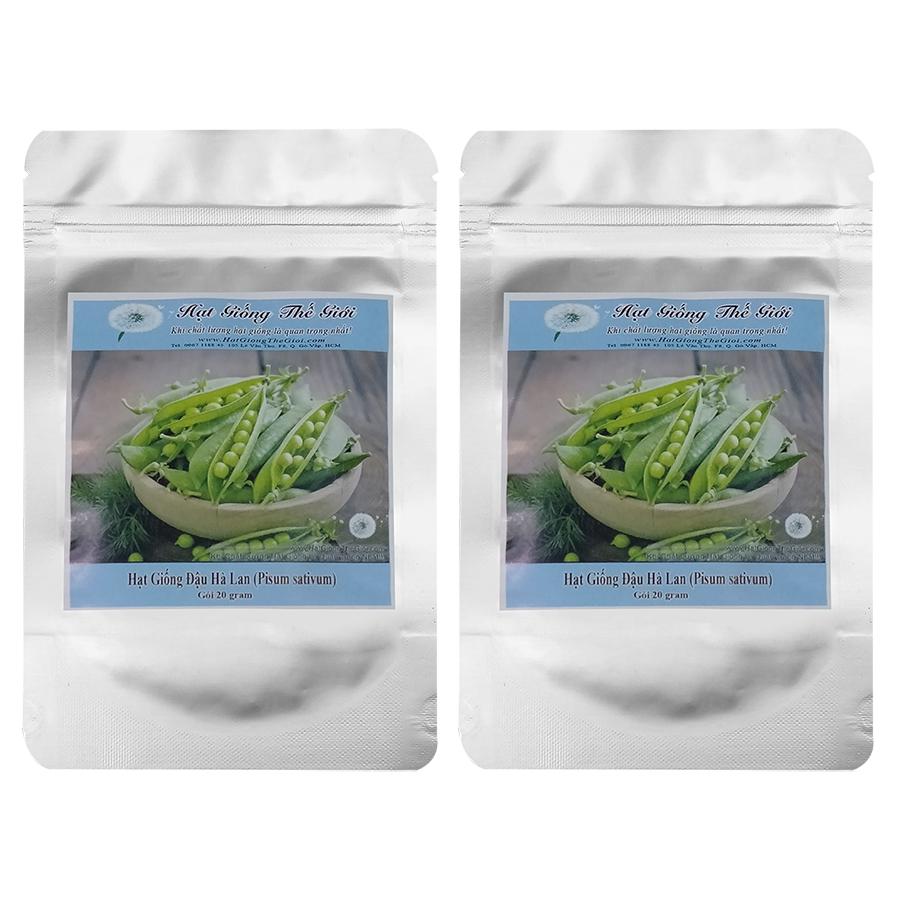 Bộ 2 túi 20g Hạt Giống Đậu Hà Lan (Pisum sativum)