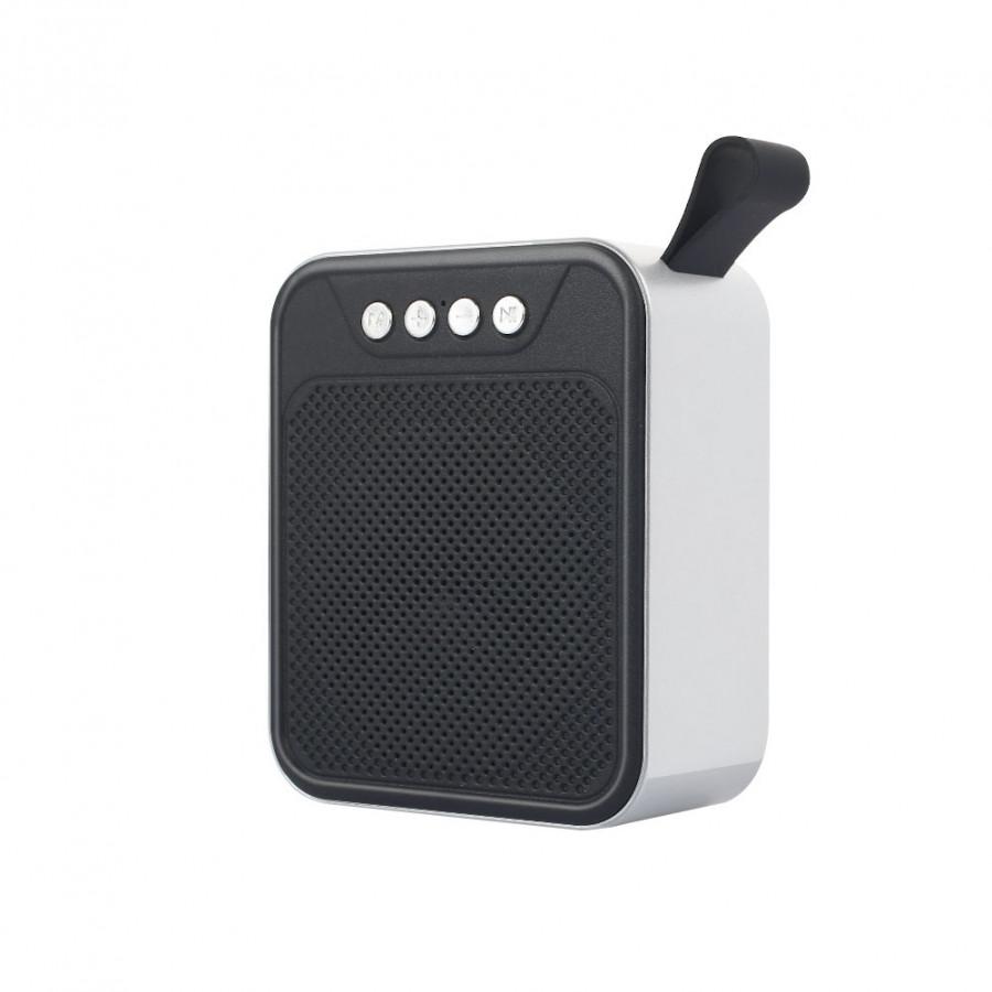 Loa Bluetooth Mini FM Radio