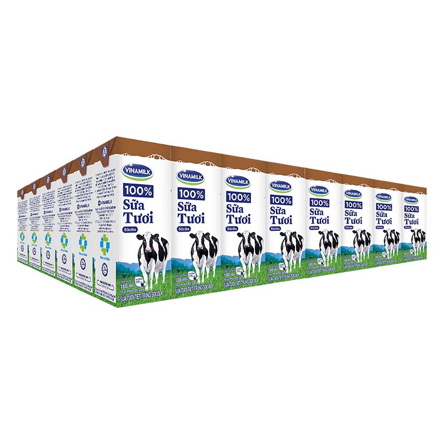 Thùng 48 Hộp Sữa Tươi Tiệt Trùng Vinamilk 100% Hương Chocolate (180ml)