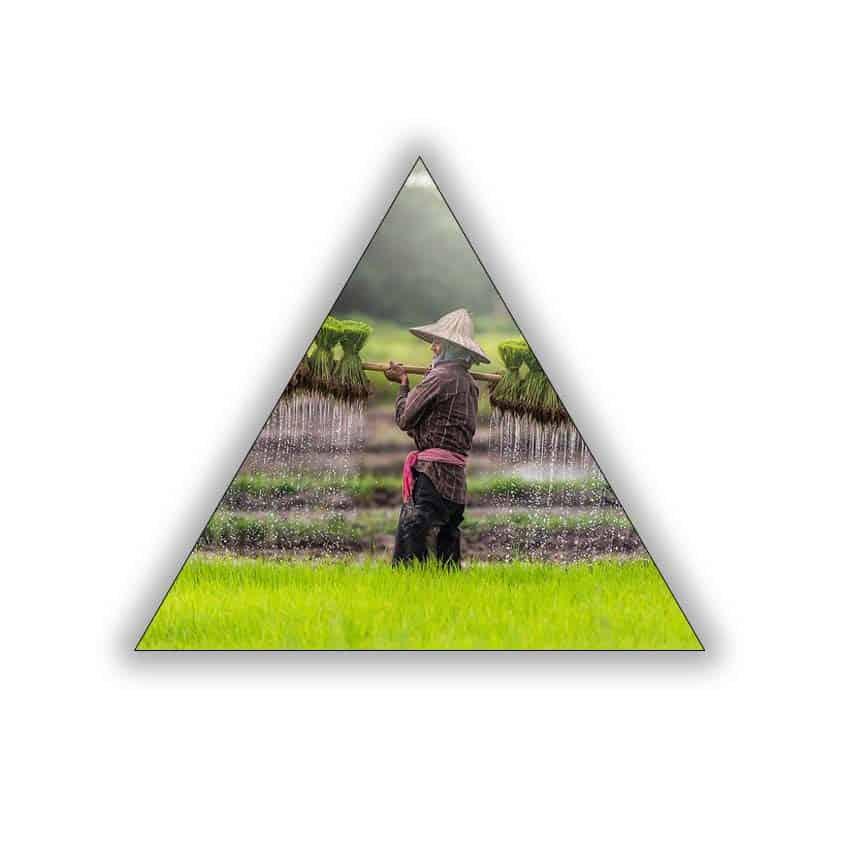 Tranh tam giác in UV Đồng Áng - 4758809 , 4582888263747 , 62_10337338 , 984000 , Tranh-tam-giac-in-UV-Dong-Ang-62_10337338 , tiki.vn , Tranh tam giác in UV Đồng Áng