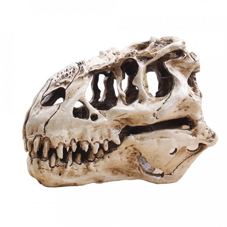 T-Rex Skull Tyrannosaur Skull Unique Aquarium Decorations Skeleton Aquarium Decoration