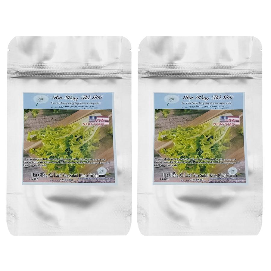 Bộ 2 Túi Hạt Giống Xà Lách Vua Salad King (Cichorium Endivia) - 50 Hạt