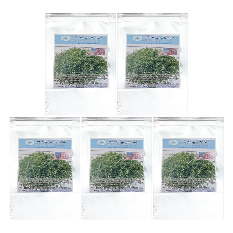 Bộ 5 túi 5 Hạt Giống Cây Đau Răng (Spilanthes oleracea) - 4833183 , 7571416298631 , 62_15609072 , 156000 , Bo-5-tui-5-Hat-Giong-Cay-Dau-Rang-Spilanthes-oleracea-62_15609072 , tiki.vn , Bộ 5 túi 5 Hạt Giống Cây Đau Răng (Spilanthes oleracea)