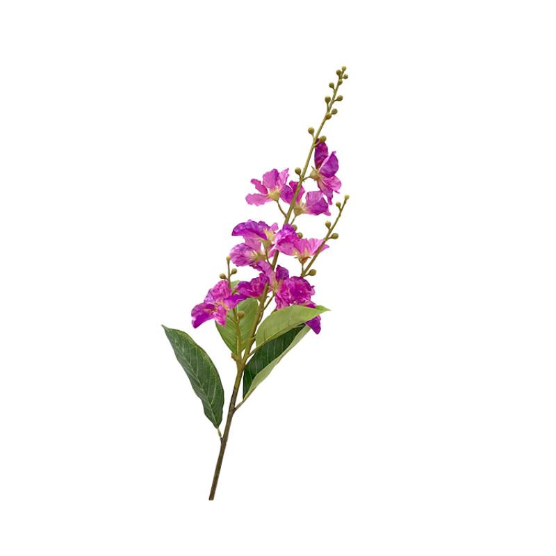 Cành Hoa Bằng Lăng