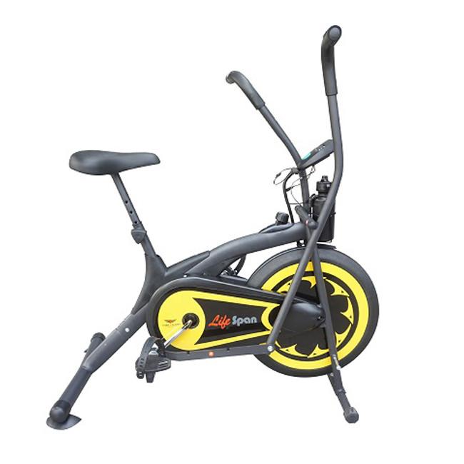 Xe đạp tập thể dục liên hoàn Life Span