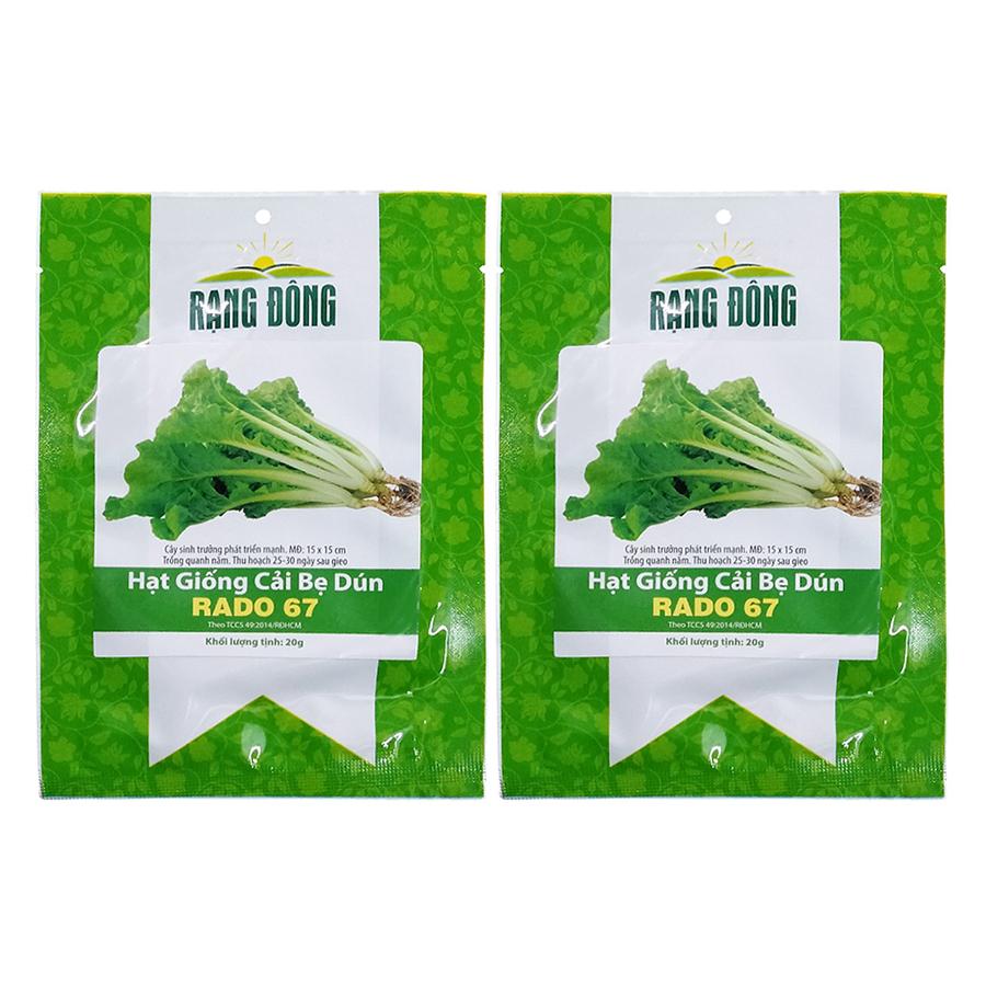 Bộ 2 Túi Hạt Giống Cải Bẹ Dún Rạng Đông (Brassica Juncea) (20g x 2)