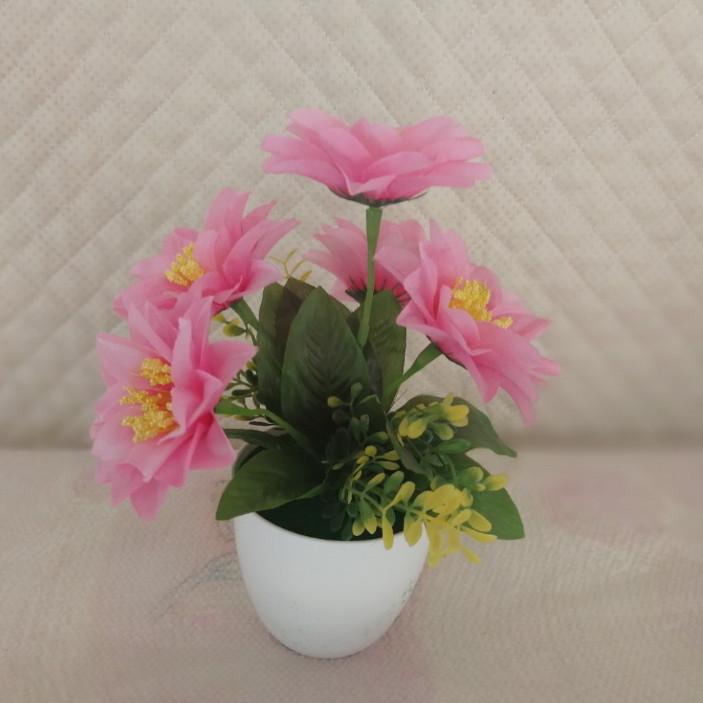 Chậu Cây hoa - bình bông - lọ hoa trang trí để bàn