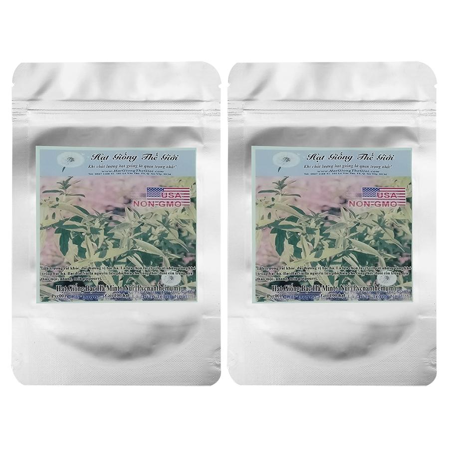 Bộ 2 túi 100h Hạt Giống Bạc Hà Mint - Núi (Pycnanthemum pilosum)