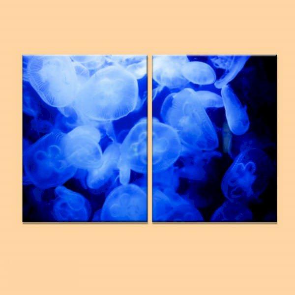 """Bộ 2 Tranh Trang Trí """"Sứa Biển Nghệ Thuật"""" - W311 - 923735 , 7441536405465 , 62_4710709 , 806000 , Bo-2-Tranh-Trang-Tri-Sua-Bien-Nghe-Thuat-W311-62_4710709 , tiki.vn , Bộ 2 Tranh Trang Trí """"Sứa Biển Nghệ Thuật"""" - W311"""