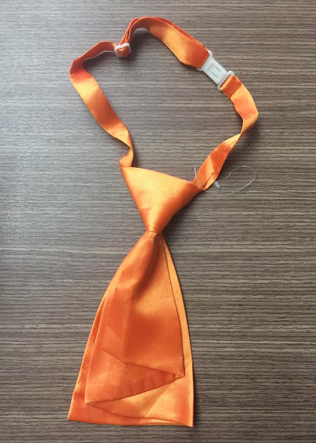 Cà vạt nam nữ thắt sẵn C24 ** - 1049748 , 8043813669738 , 62_6415281 , 68000 , Ca-vat-nam-nu-that-san-C24--62_6415281 , tiki.vn , Cà vạt nam nữ thắt sẵn C24 **