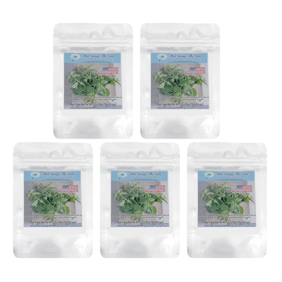 Bộ 5 Túi Hạt Giống Bạc Hà Mỹ - USA Mint (Mentha spp) 100 Hạt