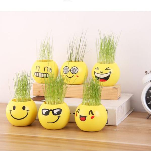 COMBO 6  Chậu trồng cây mini nhỏ xinh - Mẫu ngẫu nhiên - 1345000 , 6972427659502 , 62_5904813 , 258000 , COMBO-6-Chau-trong-cay-mini-nho-xinh-Mau-ngau-nhien-62_5904813 , tiki.vn , COMBO 6  Chậu trồng cây mini nhỏ xinh - Mẫu ngẫu nhiên