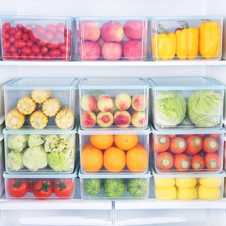 Hộp Đựng Thực Phẩm Để Tủ Lạnh HAIXIN (Loại Lớn 8l / Nhỏ 5l)