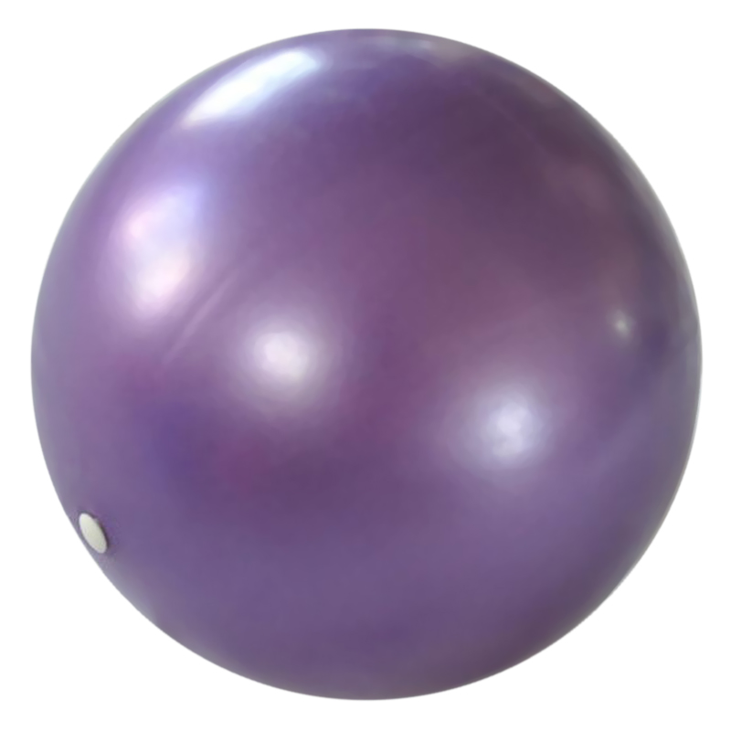25cm Mini Pilates Balance Training Yoga Gym Fitness Ball Aerobic Random Color