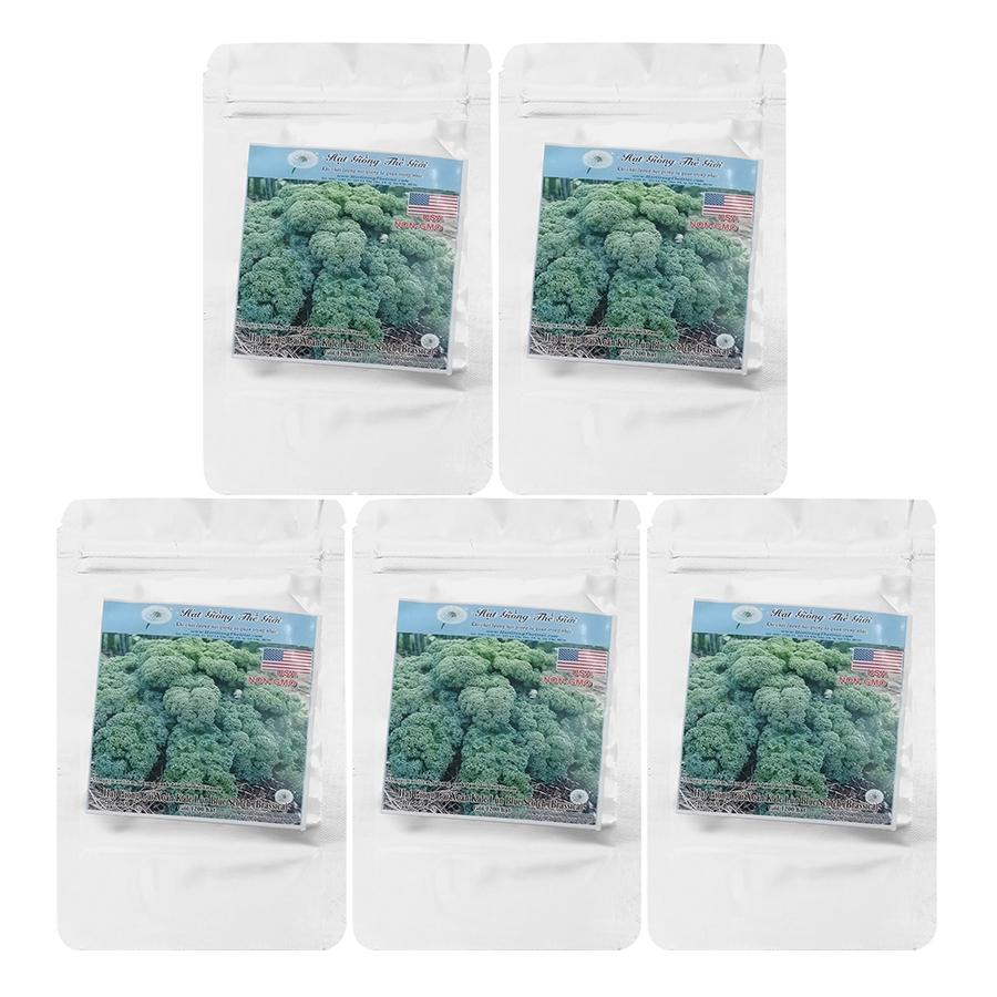 Bộ 5 Túi Hạt Giống Cải Xoăn Kale - Xoăn Lùn Blue Scotch (Brassica Oleracea, Acephala) (600Hạt/Túi)