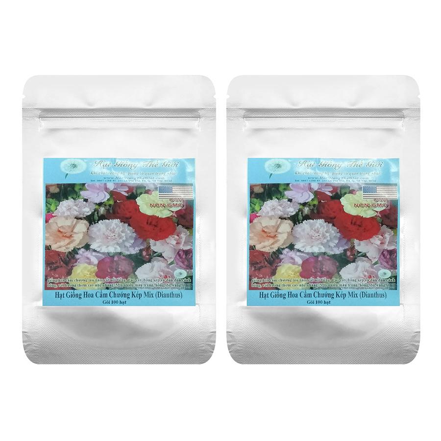 Bộ 2 Túi Hạt Giống Hoa Cẩm Chướng Kép - Mix (Dianthus caryophyllus ) - Gói 100 Hạt