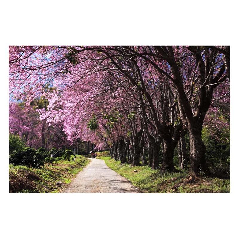 Tranh Dán Tường Phong Cảnh 3D LN0124