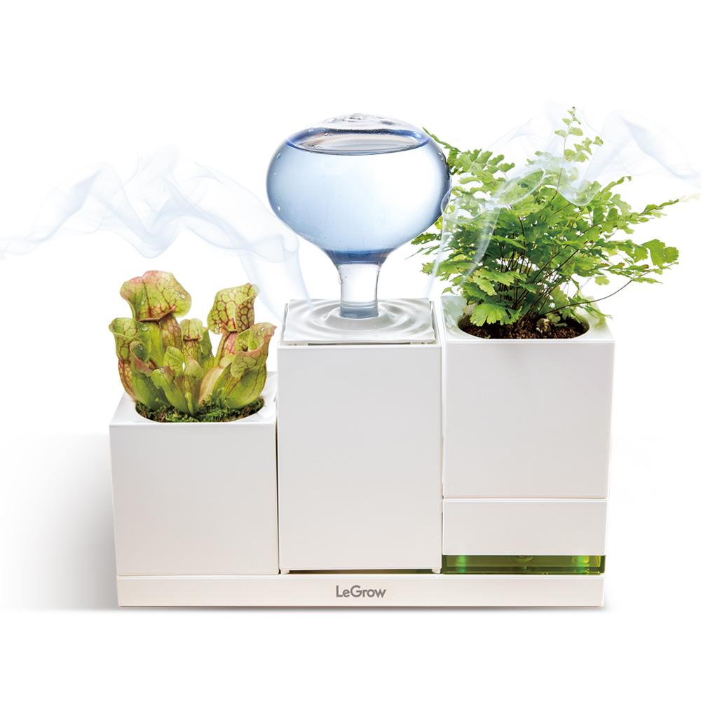 Chậu trồng cây thông minh tích hợp máy phun sương và đế sạc di động LEGROW - Purify the Air
