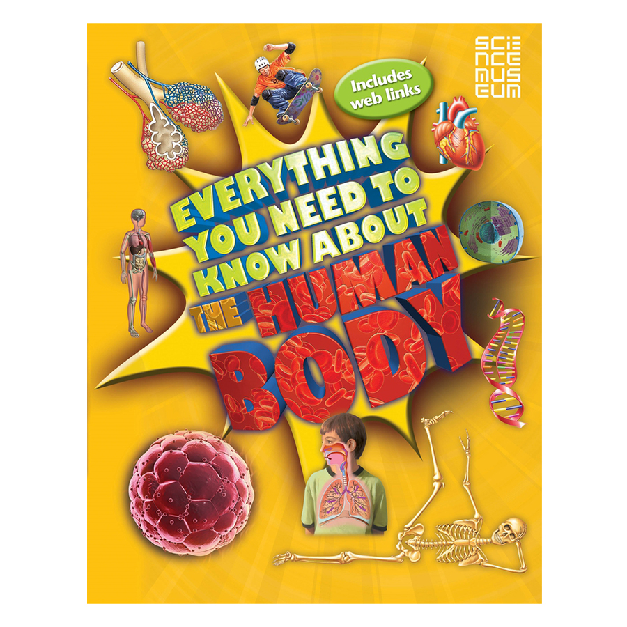 Everything You Need To Know About The Human Body - 1080875 , 2639233802624 , 62_3958345 , 330000 , Everything-You-Need-To-Know-About-The-Human-Body-62_3958345 , tiki.vn , Everything You Need To Know About The Human Body