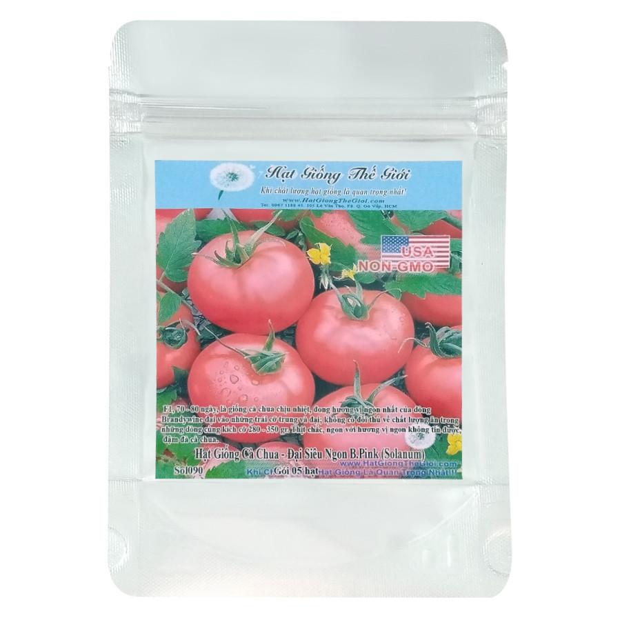 Hạt Giống Cà Chua - Đại Ngon Thứ 2 Thế Giới B.Pink - Solanum Lycopersicum (5 Hạt)