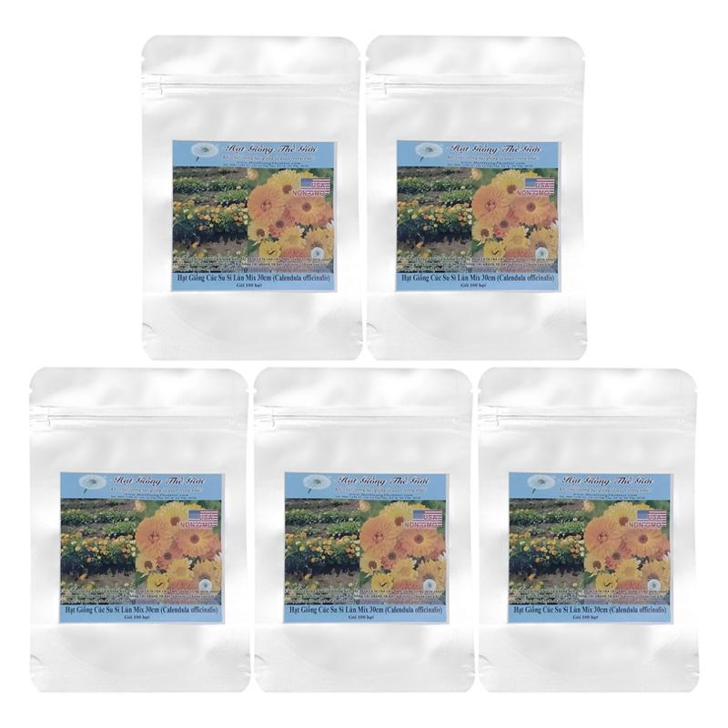 Bộ 5 Túi 100 Hạt Giống Hoa Cúc Su Si - Lùn Mix 30 Cm (Calendula Officinalis)
