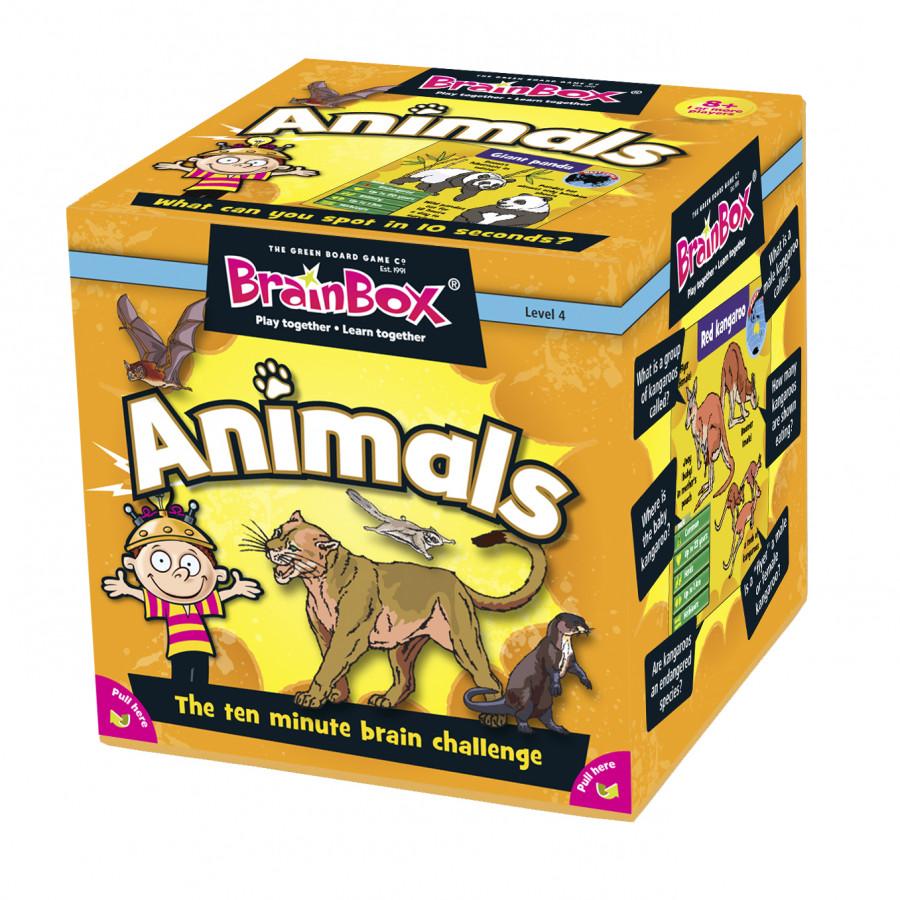 Bộ đồ chơi giúp ghi nhớ học tiếng anh Brain box Animal - 90002