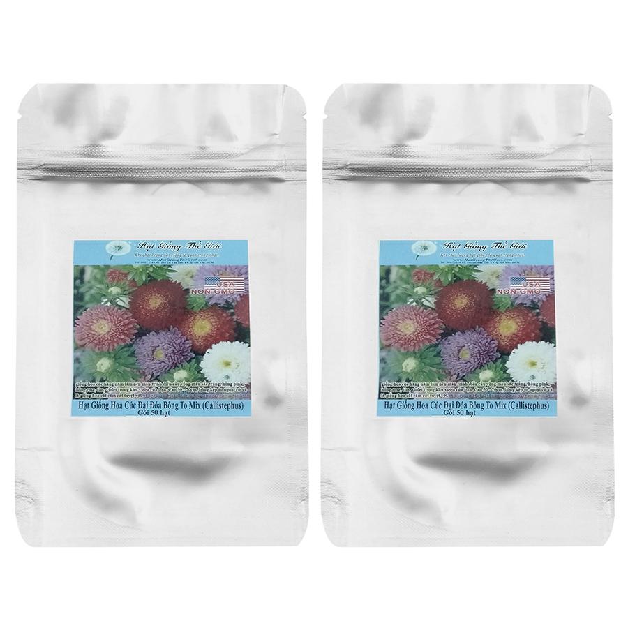 Bộ 2 Túi Hạt Giống Hoa Cúc Đại Đóa Bông To - Mix Nhiều Màu (Callistephus Chinensis) (50Hạt x 2)