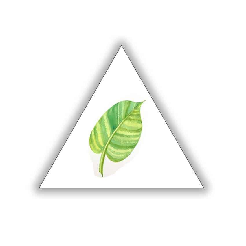 Tranh tam giác in PP Lá Non