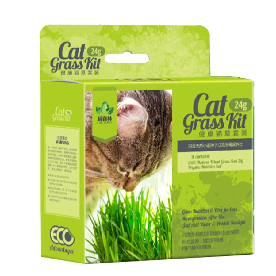 Bộ Hạt Giống Cỏ Mèo Và Chậu Nhỏ Cat Forest