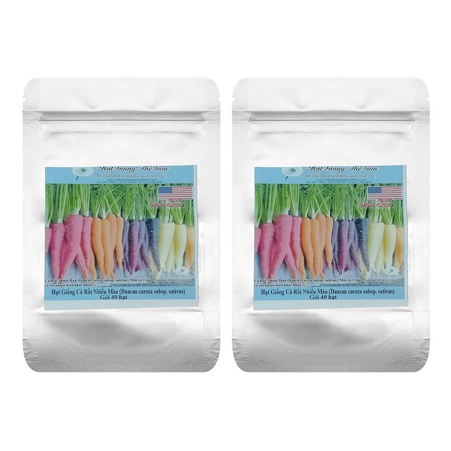 Bộ 2 Túi Hạt Giống Cà Rốt Nhiều Màu (Daucus carota subsp sativus) - 40 Hạt