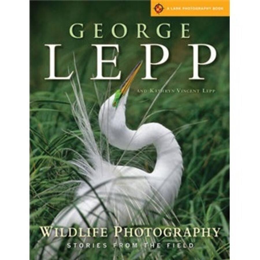 Wildlife Photography - 1245684 , 7747790664830 , 62_5302445 , 606000 , Wildlife-Photography-62_5302445 , tiki.vn , Wildlife Photography