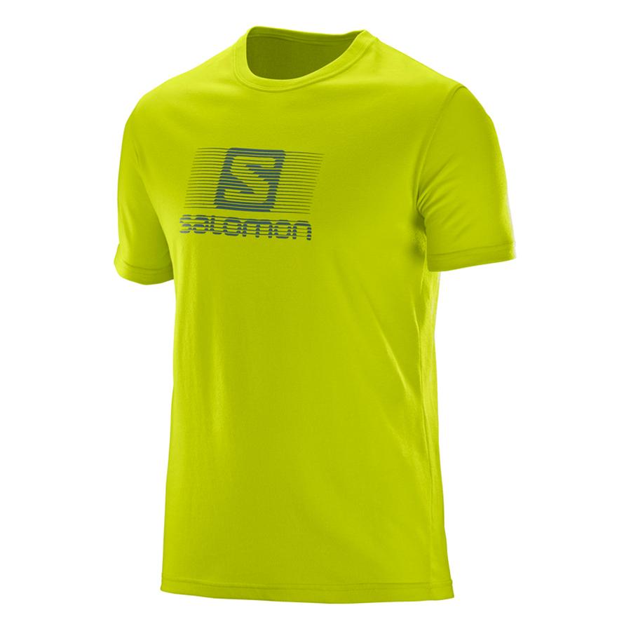 Áo Cotton Blend Logo Ss Tee - L39374000