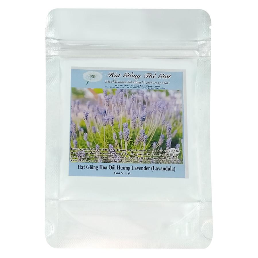 Hạt Giống Hoa Oải Hương Lavender (50 Hạt)