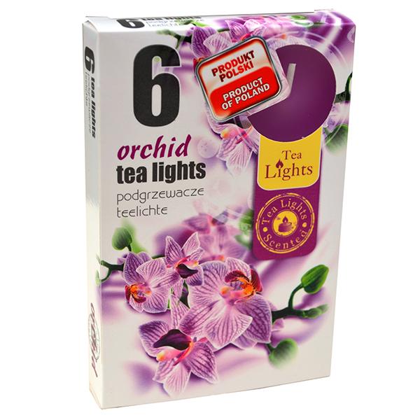 Hộp 6 Nến Thơm Tealight Admit Orchid ADM7708 (Hoa địa lan)