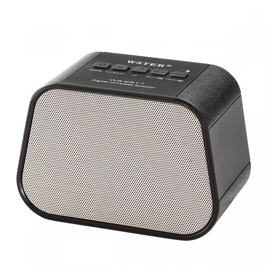 Loa Bluetooth Wster Ws-2817
